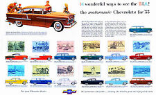 1955 Chevrolet All 14 Models Showroom Wall Illustration 11 x 17 Giclee Print