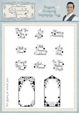 Phill Martin BLOSSOM OCCASIONS SENTIMENTS TAGS A5 Clear Stamp Set