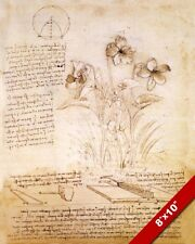 LEONARDO DA VINCI INVENTION SKETCH & FLOWER PLANT DRAWING REAL CANVAS ART PRINT