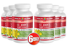 St. John's Wort Herb - Well Being. Promotes Positive Mood (6 Bottles 360 Caps)