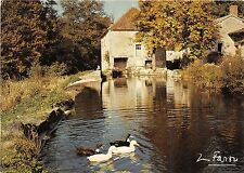 BR30980 Champagne pittoresque le vieux Moulin duck wind mill France
