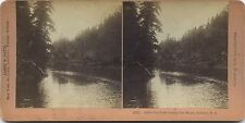 Sydney Nova Scotia Canada Poet courts the Muse Photo Stéréo Stereoview Vintage