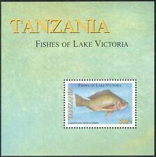 Tanzania 2005 Nile Tilapia/Fish of Lake Victoria/Nature/Wildlife 1v m/s (n16272)