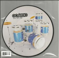 GO AUDIO w/ Made up Stories LIVE PICTURE DISC UK 7 INCH Vinyl USA SELR MINT 2008