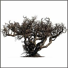 BADLANDS SCARY DEAD TREE SET – PAINTED