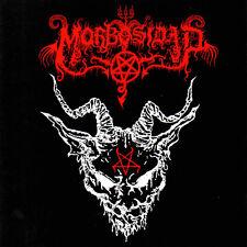 Morbosidad-morbosidad LP