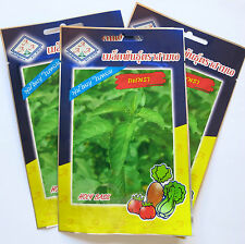Thai Holy Basil seeds - Krapow/Gra prao - 2 gram / 4,000 - UK Seller - Free P&P