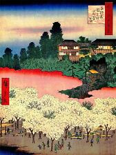 PAINTING JAPANESE WOODBLOCK CVHERRY BLOSSOM PARK ART POSTER PRINT LV2611