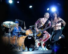 Rouge Chaud Chili Peppers En Direct Batterie 10x8 Photo