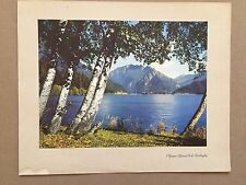 Vintage Original 1940's Chevron 'Facts About Olympic National Park' Print