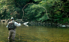 Instructional Fly Fishing, LEARN THE BASICS OF FLY FISHING training ~~ DVD