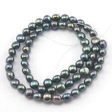 """Natural 5-6mm Button Coin Black Freshwater Pearl Jewlery Beads Strand 15"""""""