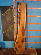 "#9206  1 1/2"" THICK butternut yellow walnut live edge slab"