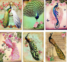 Vintage inspired peacock tag blank small card ATC altered art set of 6