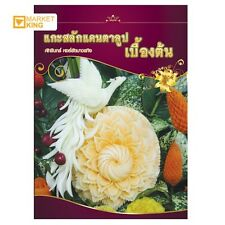 CANTALOUP CARVING GUIDE BOOKFRUITS & VEGETABLE EASY INSTRUCTION GUIDE BEAUTY