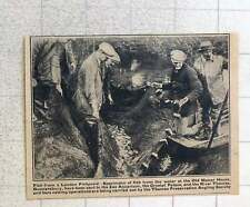 1923 Fish Netted From Old Manor House Gunnersbury Pond For Zoo Aquarium