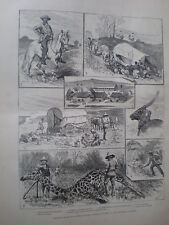 Sketches in Bechuna and matabele country 1883 old prints