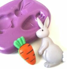 Easter BUNNY 'n' CARROT Silicone Mould Fondant Sugarpaste Fondant Polymer Clay