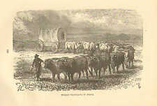 Covered Ox Wagon, Africa, Trophy, Hunting, Vintage, 1890 Antique Art, Print,