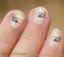 Bichon Frise, small white dog,  24 Unique Designer Dog Nail Art Stickers