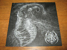 "ILL OMEN ""Divinity Through Un-Creation"" LP  teitanblood portal"