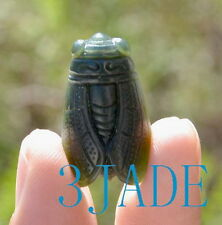 Natural Nephrite Jade Cicada Pendant Hand Carved Charm Necklace
