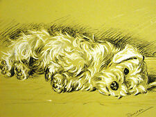 "Lucy Dawson Exhausted SEALYHAM ""Bustle Doesn""t Care"" 1937 Dog Print Matted"