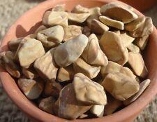 1 lb. Bean Pebble-Woodstone
