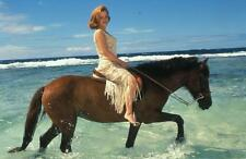 Gillian Anderson A4 Photo 41
