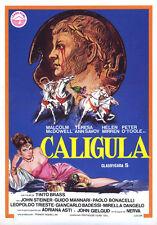 "Caligula Movie Poster Replica 13x19"" Photo Print"