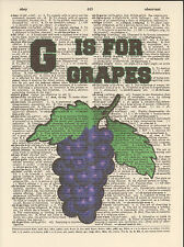 G is for Grapes Alphabet Altered Art Print Upcycled Vintage Dictionary Page