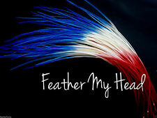 10 Pc Ombre Tie Dye Feather Hair Extension Medium Length Red And Blue