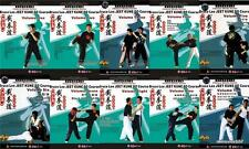 Chinese Bruce Lee Jeet Kune Do Course Series, 10 DVDs/Set English Sub Brand New