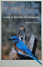 BLUEBIRDS IN THE UPPER MIDWEST