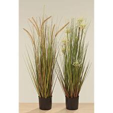 Arte pianta erba papiro 80cm getopft mod. B