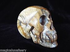 230g CRYSTAL SKULL PICTURE JASPER GEMSTONE CARVING REIKI HEALING UNUSUAL GIFT