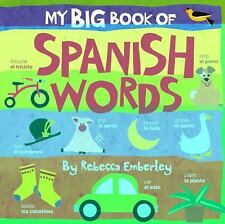 My Big Book of Spanish Words (My Big Book Of...)