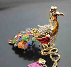 609 Betsey Johnson Crystal Enamel Peacock Pendant Sweater Chain Necklace