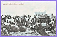 ADEN ETHNIC CAMELS  SHEIKH OLTHMANS CARAVAN AT REST POSTCARD
