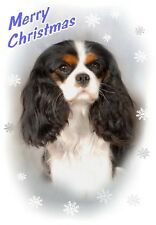 Cavalier King Charles Spaniel Dog A6 Christmas Card Design XCAV-26 by paws2print
