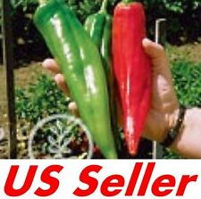 50 PCS Heirloom BIG JIM Hot Pepper NuMex SEEDS E16, HEAVY YIELDS of HUGE PEPPERS