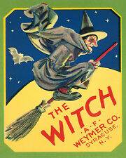THE WITCH BROOM FLYING FULL MOON SYRACUSE NY 8X10 VINTAGE POSTER REPRO FREE S/H