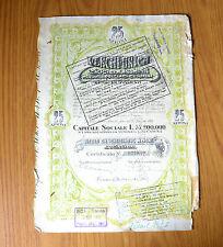 VENCHI UNICA SOCIETA' ANONIMA CERTIFICATO NOMINATIVO PER 25 AZIONI 12 12 1947