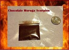 2.3 Grams Chocolate Moruga chili Powder sample spice World Record Hottest! Brown