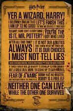 HARRY POTTER QUOTES INFOGRAPHIC POSTER New Rolled Poster 24x36