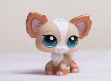 *Littlest Pet Shop* LPS #1082 Shimmer Glitter Tan White Chihuahua Puppy Dog Rare