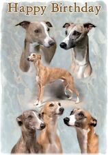 Whippet Dog Design A6 Textured Birthday Card BDWHIPPET-7 by paws2print