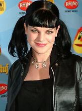 PHOTO NCIS -PAULEY PERRETTE /11X15 CM #11