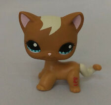 In hand  Littlest Pet Shop Rare short hair brown Cat with blue eyes  #128