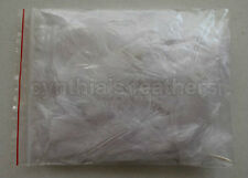 """10g (0.35Oz) Snow White 3~4"""" Turkey Plumage Feathers for crafting, 80~120 counts"""